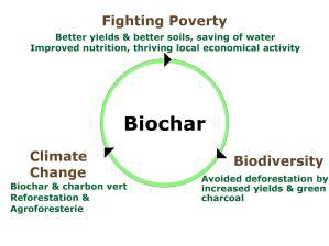 Biochar-En-page-001.jpg